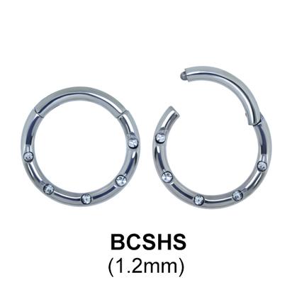 Segment Ring BCSHS 1.2mm