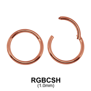 Rose Gold Plated Segment Ring RGBCSH 1.0mm