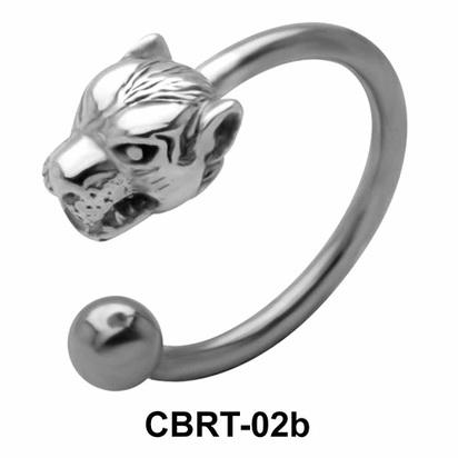 Big Tiger Belly Piercing Circular Barbell CBRT-02b