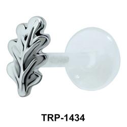 Leafy Tragus Piercing TRP-1434