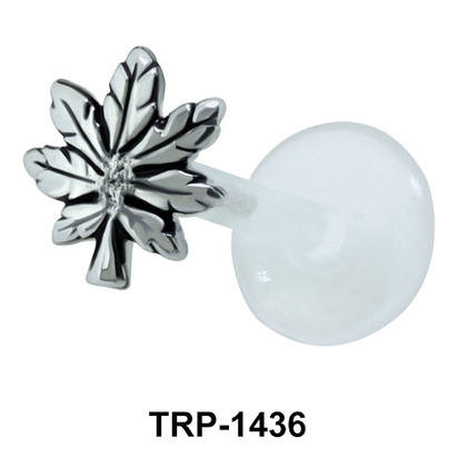 Weed Shaped Tragus Piercing TRP-1436