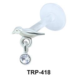 Sparrow Tragus Piercing TRP-418