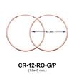 Hoop Silver Earring CR-12 (1.6x45)